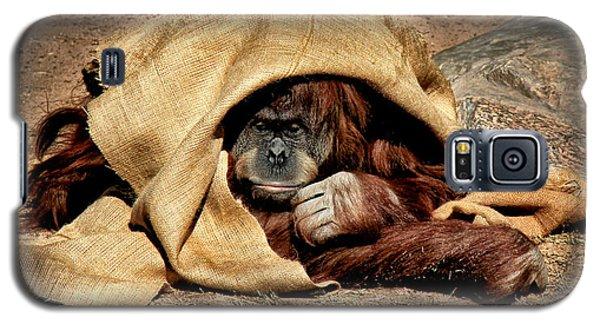 Hiding In Plain Sight Galaxy S5 Case