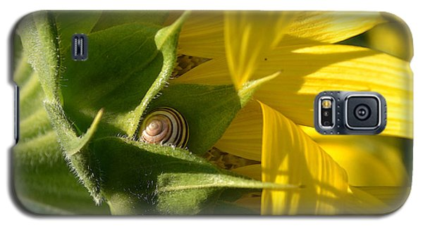 Galaxy S5 Case featuring the photograph Hiding Snail Wc  by Lyle Crump