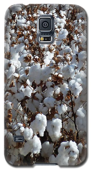 High Cotton Galaxy S5 Case by Methune Hively