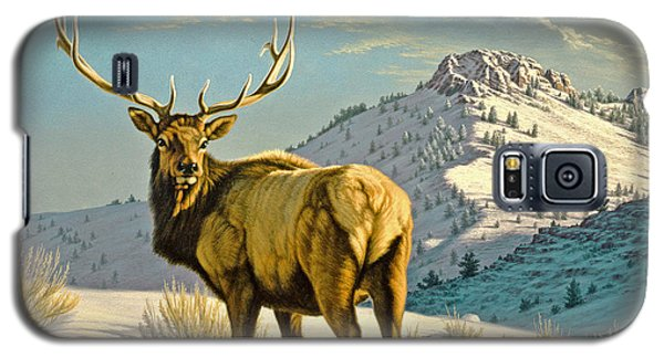 Bull Galaxy S5 Case - High Country Bull by Paul Krapf