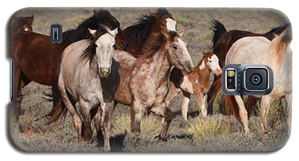 High Desert Horses Galaxy S5 Case