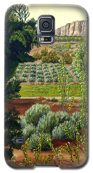 High Mountain Olive Trees  Galaxy S5 Case