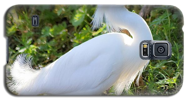 High Stepping Egret 1 Galaxy S5 Case