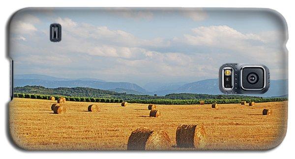 High Summer Harvest Galaxy S5 Case
