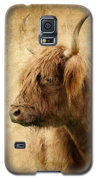 Highland Bull Galaxy S5 Case by Athena Mckinzie