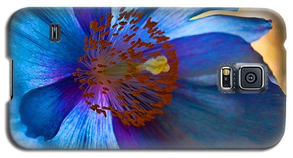 Himalayan Blue Poppy IIi Galaxy S5 Case