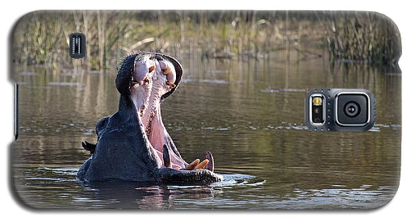 Galaxy S5 Case featuring the photograph Hippo Yawning by Liz Leyden