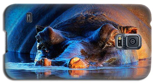 Hippopotamus  At Sunset Galaxy S5 Case by Johan Swanepoel