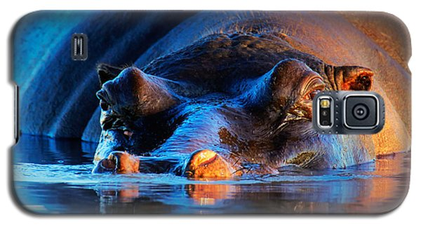 Hippopotamus  At Sunset Galaxy S5 Case by Johan Swanepoel