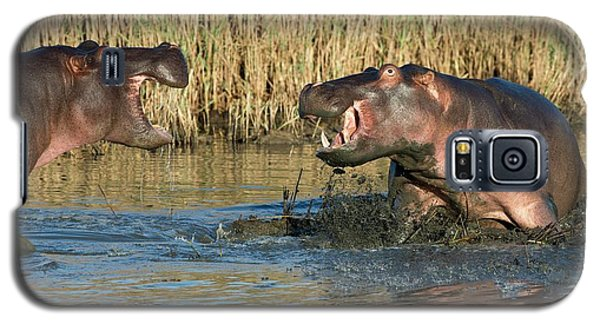 Hippopotamus Confrontation Galaxy S5 Case by Tony Camacho