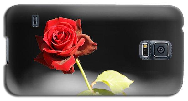 Hiroshima Rose Galaxy S5 Case by Cassandra Buckley