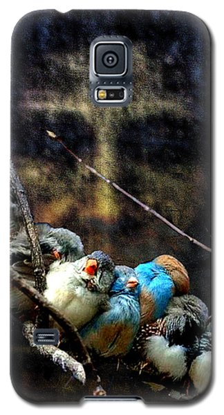 His Eye Is On The Sparrow Galaxy S5 Case by Seth Weaver
