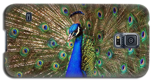 Galaxy S5 Case featuring the photograph His Majesty by Geraldine DeBoer