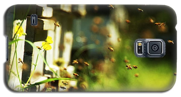 Hives And Bees Galaxy S5 Case