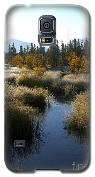 Galaxy S5 Case featuring the photograph Hoar Frost And Stream by Jessie Parker