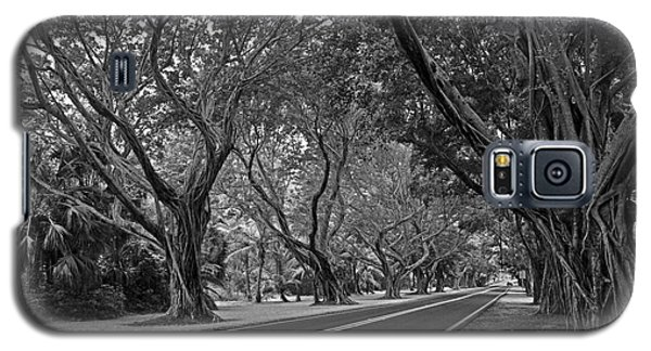 Galaxy S5 Case featuring the photograph Hobe Sound Bridge Rd. West II by Larry Nieland