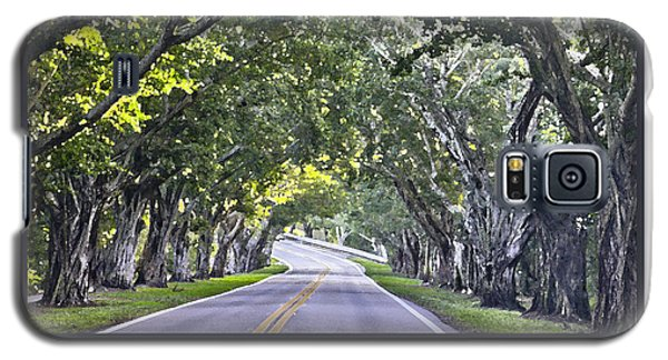 Hobe Sound Fl-bridge Street Banyans Galaxy S5 Case by Betty Denise