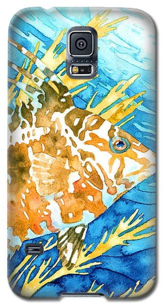 Hogfish Portrait Galaxy S5 Case