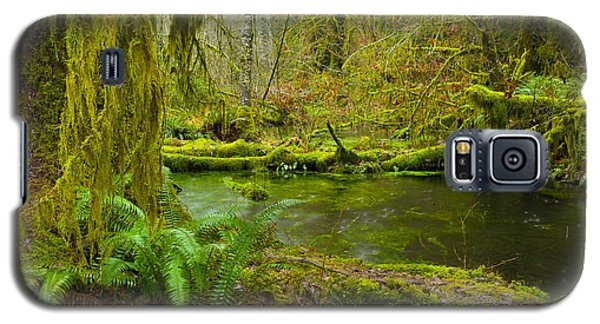 Hoh Rainforest 3 Galaxy S5 Case