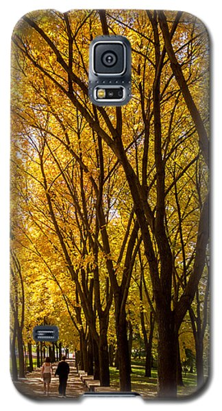 Holding Hands Under Tree Canopy Galaxy S5 Case