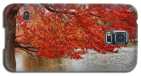Galaxy S5 Case featuring the photograph Holding Our Bright Red Joy by Jeff Folger