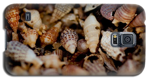 Galaxy S5 Case featuring the photograph Holey Shells by Carole Hinding