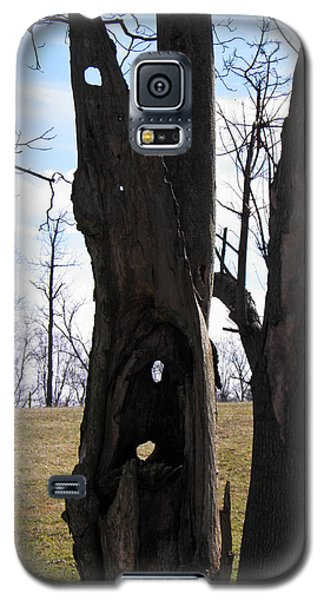 Galaxy S5 Case featuring the photograph Holey Tree Trunk by Nick Kirby