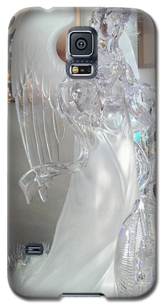 Holiday Guardian Galaxy S5 Case