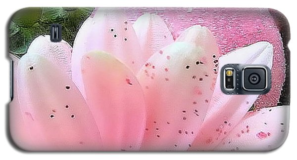 Holiday Pink Daisy  Galaxy S5 Case