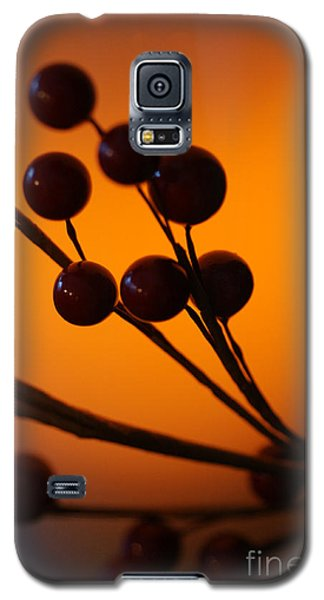 Galaxy S5 Case featuring the photograph Holiday Warmth 3 by Linda Shafer