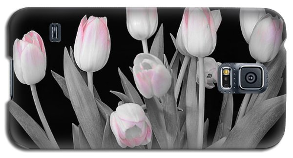 Galaxy S5 Case featuring the photograph Holland Tulips In Black And White With Pink by Jeannie Rhode