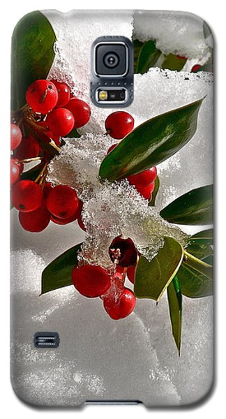 Holly Berries Galaxy S5 Case