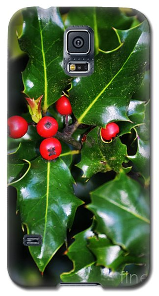 Galaxy S5 Case featuring the photograph Holly by Mindy Bench