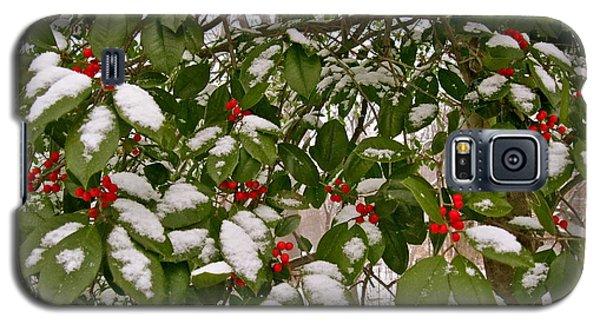 Holly - Winter Galaxy S5 Case