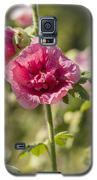 Hollyhock Galaxy S5 Case
