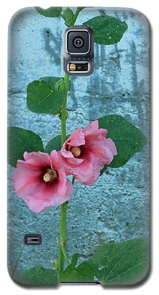 Galaxy S5 Case featuring the photograph Hollyhock by E Faithe Lester