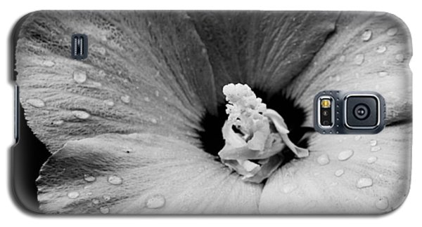Hollyhock In Black And White Galaxy S5 Case