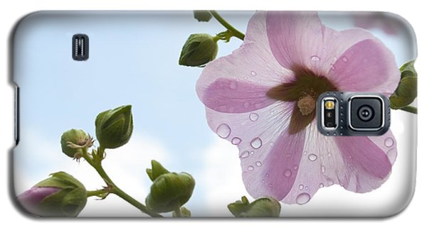 Galaxy S5 Case featuring the photograph Hollyhock With Raindrops by Lana Enderle