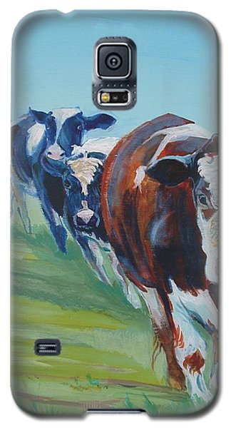 Holstein Friesian Cows Galaxy S5 Case