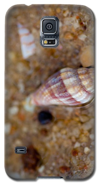 Home Awaits Galaxy S5 Case by Carole Hinding