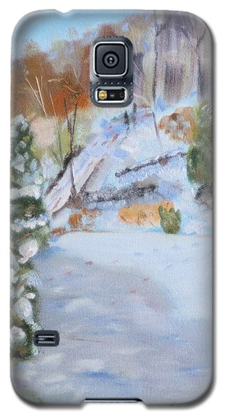 Galaxy S5 Case featuring the painting Home Scene South by Michael Daniels
