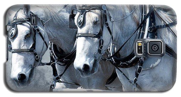 Galaxy S5 Case featuring the digital art Homeward Bound by Mary Almond