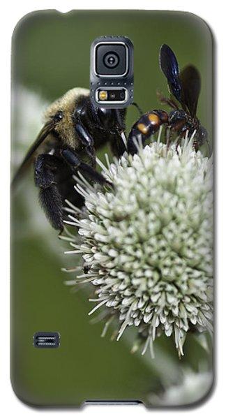 Honey Bee 0001 Galaxy S5 Case