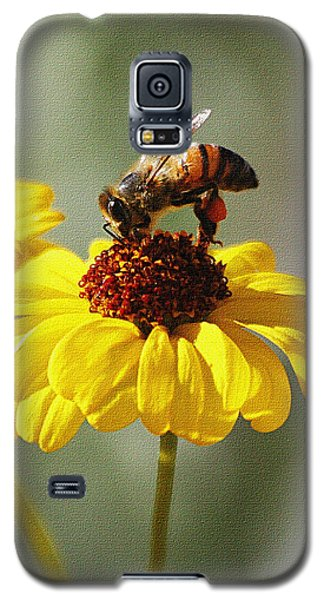 Honey Bee And Brittle Bush Flower Galaxy S5 Case by Tom Janca