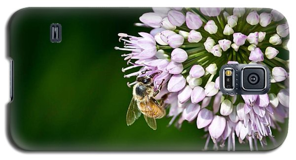 Honey Bee And Lavender Flower Galaxy S5 Case