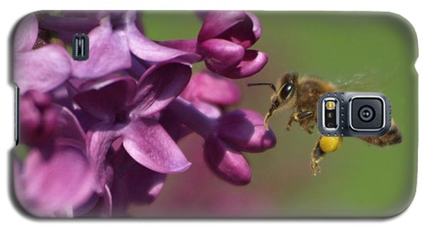 Honey Bee And Lilac Galaxy S5 Case by James Peterson