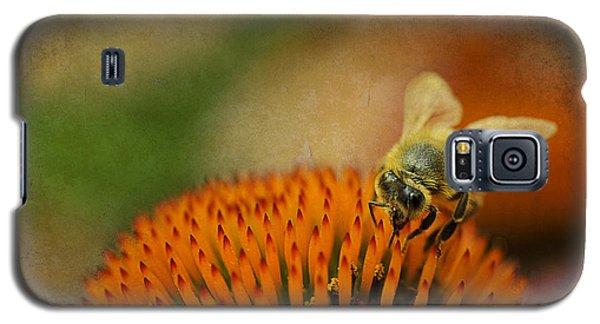Honey Bee On Flower Galaxy S5 Case