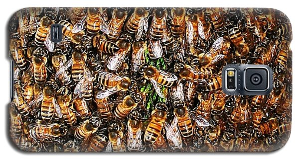 Galaxy S5 Case featuring the photograph Honey Bee Swarm by Tom Janca