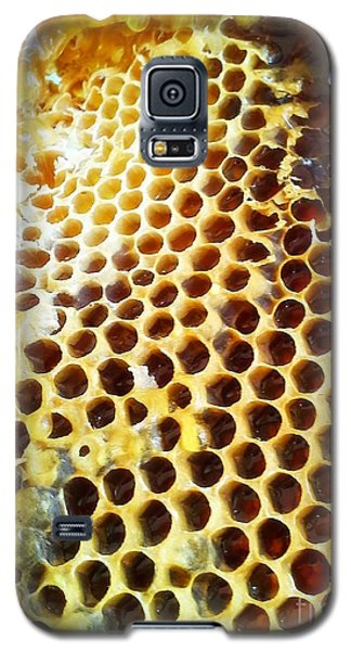 Galaxy S5 Case featuring the photograph Honey Honey by Kristine Nora