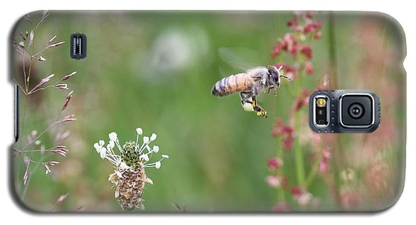 Honeybee Flying In A Meadow Galaxy S5 Case by Lucinda VanVleck